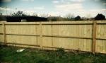 Fencing in Essex